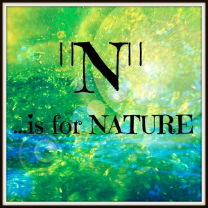 N is for Nature 2