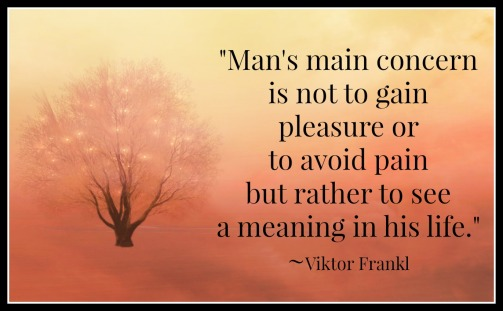 Meaning Viktor Frankl