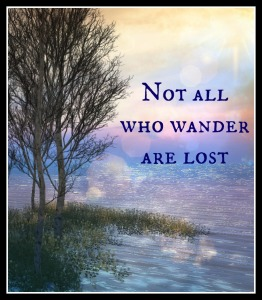 Wander not lost