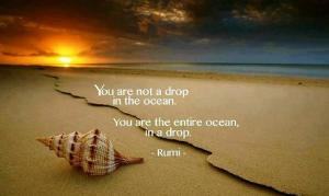 Rumi Ocean in a Drop